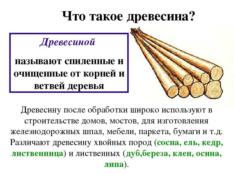 Что такое древесина? Древесиной называют спиленные и очищенные от корней и ве...