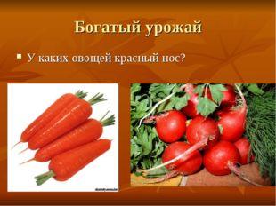Богатый урожай У каких овощей красный нос?