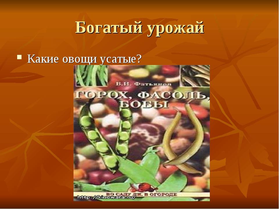 Богатый урожай Какие овощи усатые?