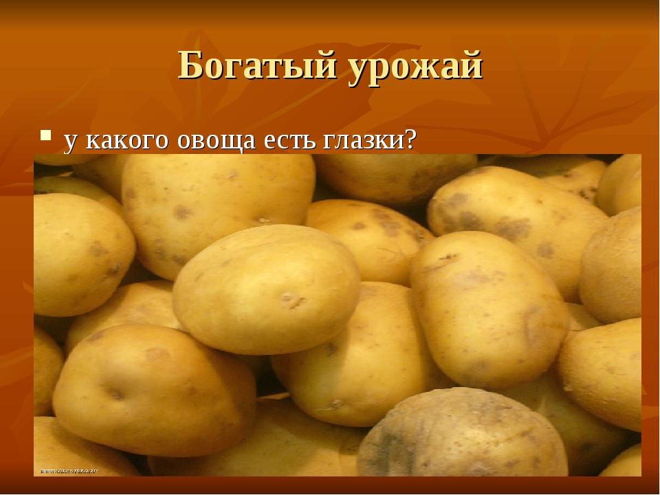 Богатый урожай у какого овоща есть глазки?