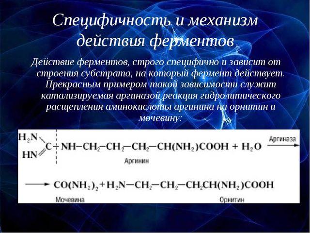 Специфичность и механизм действия ферментов Действие ферментов, строго специф...