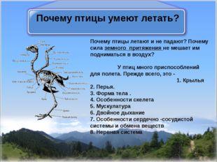 Почему птицы умеют летать? Почему птицы летают и не падают? Почему силаземно