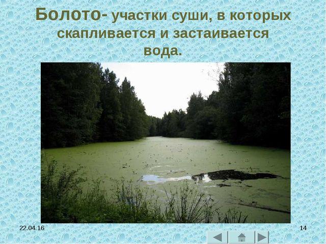 * * Болото- участки суши, в которых скапливается и застаивается вода.
