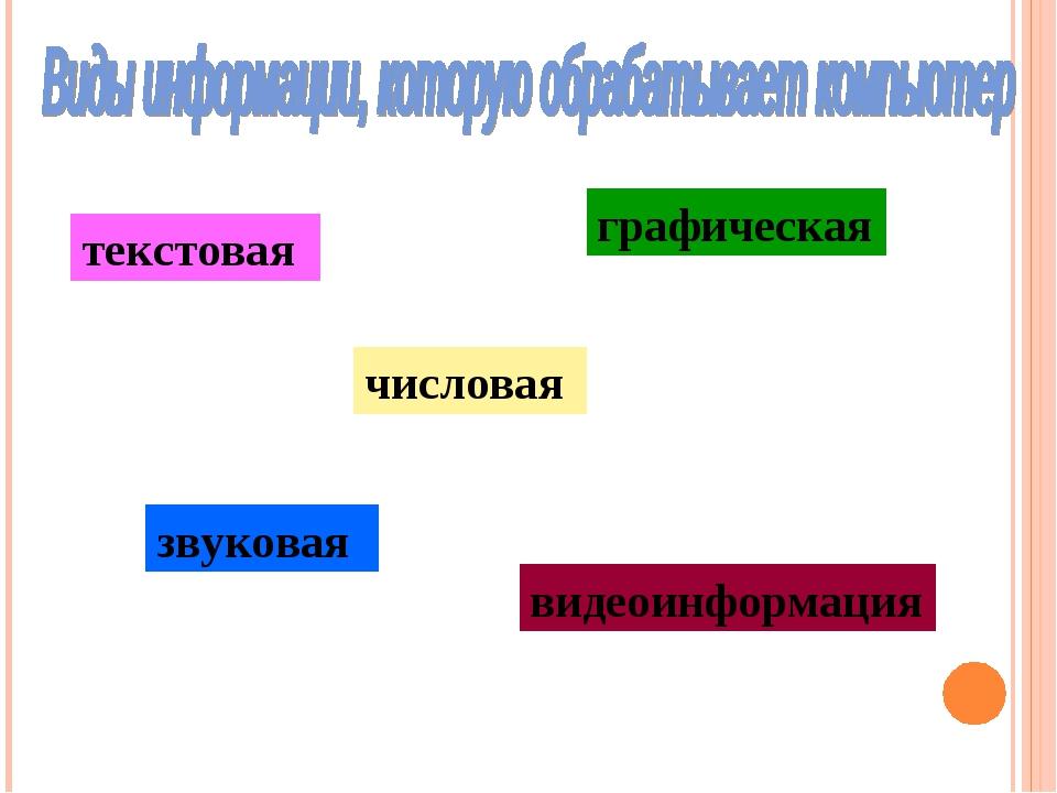 текстовая графическая числовая звуковая видеоинформация