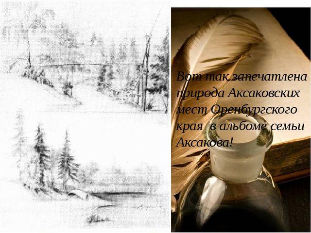 Вот так запечатлена природа Аксаковских мест Оренбургского края в альбоме сем...