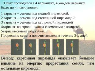 Опыт проводился в 4 вариантах, в каждом варианте было по 4 повторности: