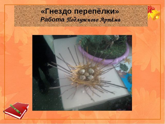 «Гнездо перепёлки» Работа Подлужного Артёма