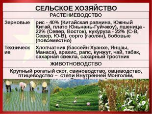 СЕЛЬСКОЕ ХОЗЯЙСТВО РАСТЕНИЕВОДСТВО Зерновые рис -40%(Китайская равнина, Южный