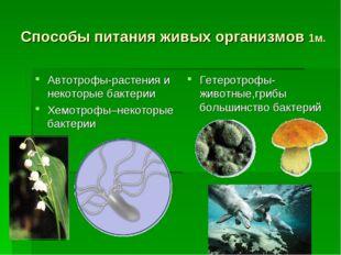 Способы питания живых организмов 1м. Автотрофы-растения и некоторые бактерии