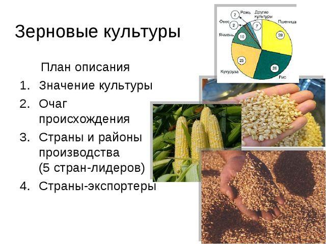 Зерновые культуры План описания Значение культуры Очаг происхождения Страны и...