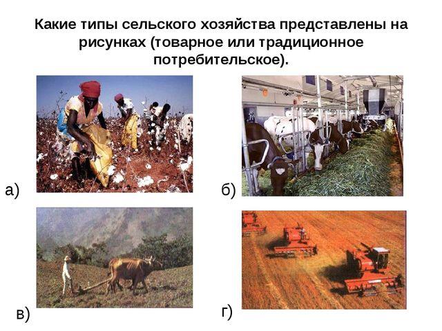 Какие типы сельского хозяйства представлены на рисунках (товарное или традици...