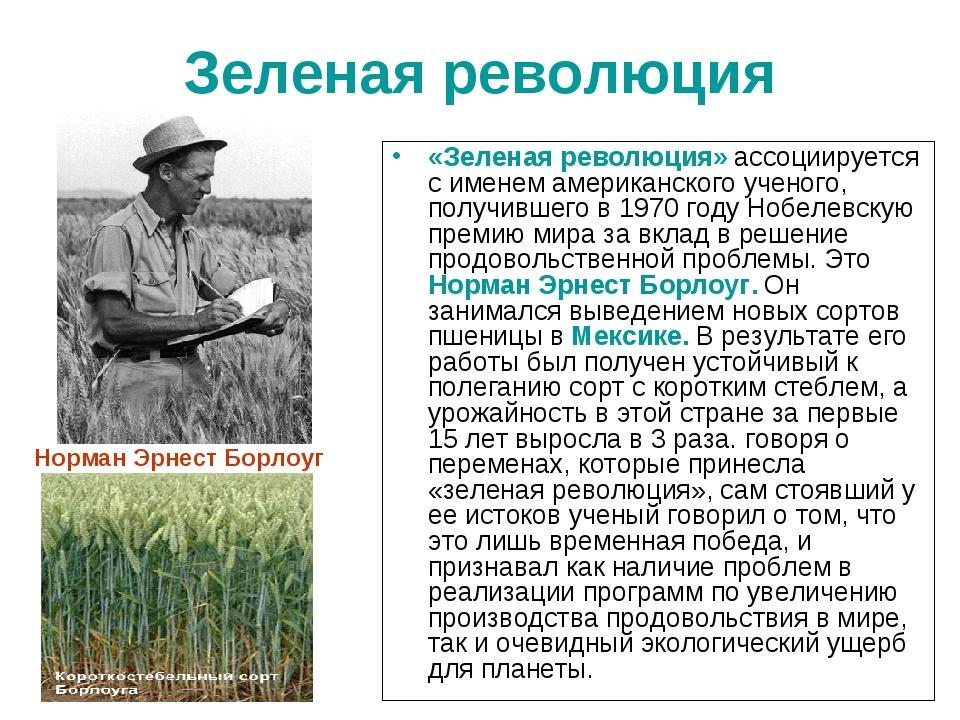 Зеленая революция «Зеленая революция» ассоциируется с именем американского уч...