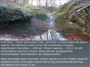 Река Фарс - левый приток реки Лабы, протекает по Краснодарском краю и Адыгее.