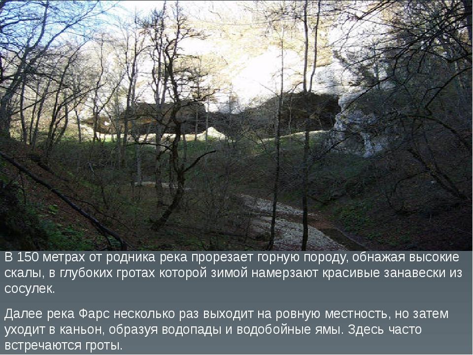 В 150 метрах от родника река прорезает горную породу, обнажая высокие скалы,...
