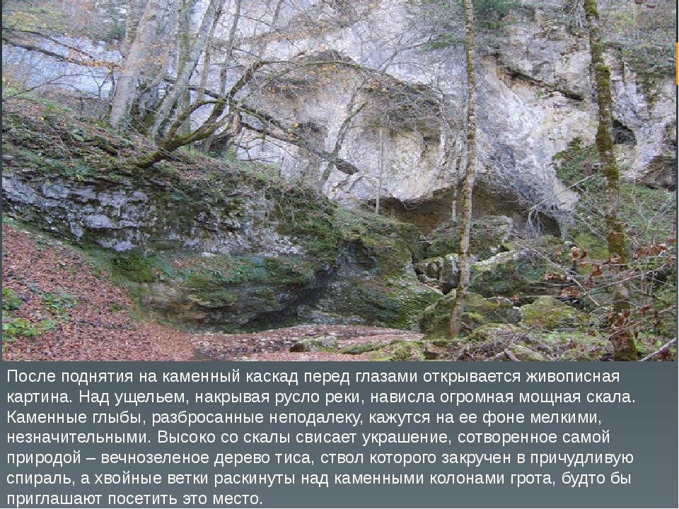 После поднятия на каменный каскад перед глазами открывается живописная картин...