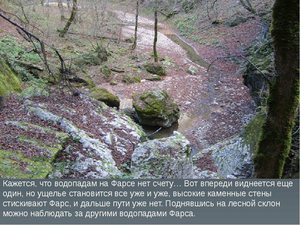 Кажется, что водопадам на Фарсе нет счету… Вот впереди виднеется еще один, но...