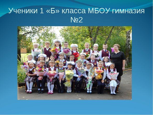 Ученики 1 «Б» класса МБОУ гимназия №2