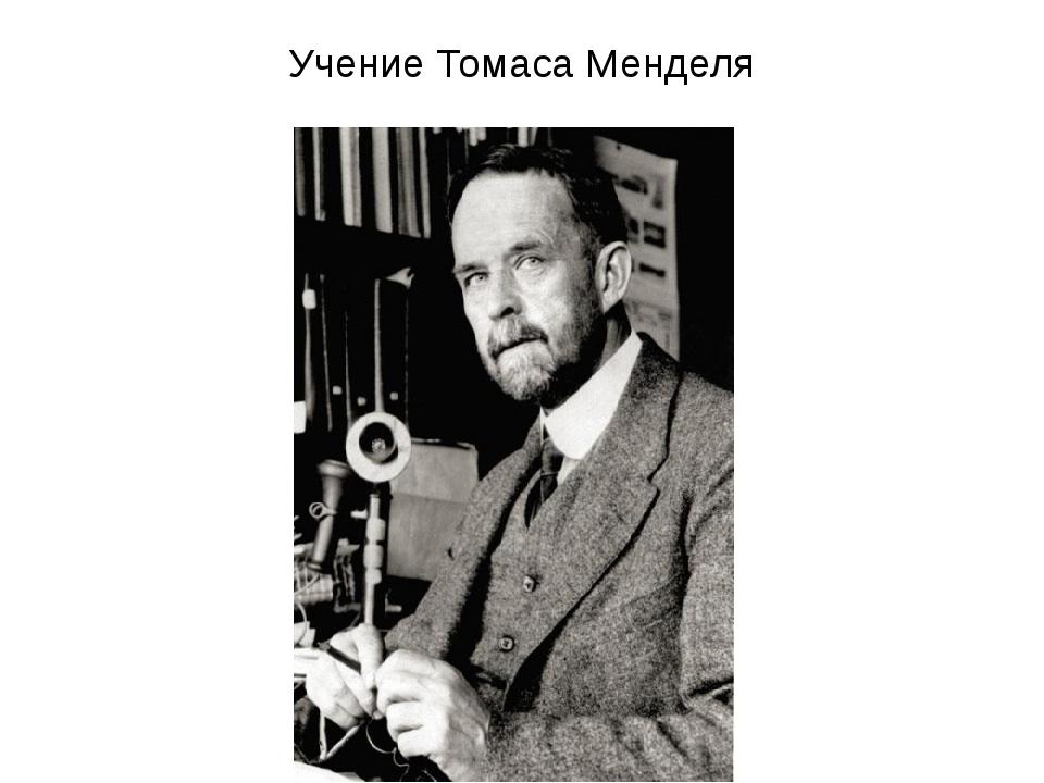 Учение Томаса Менделя