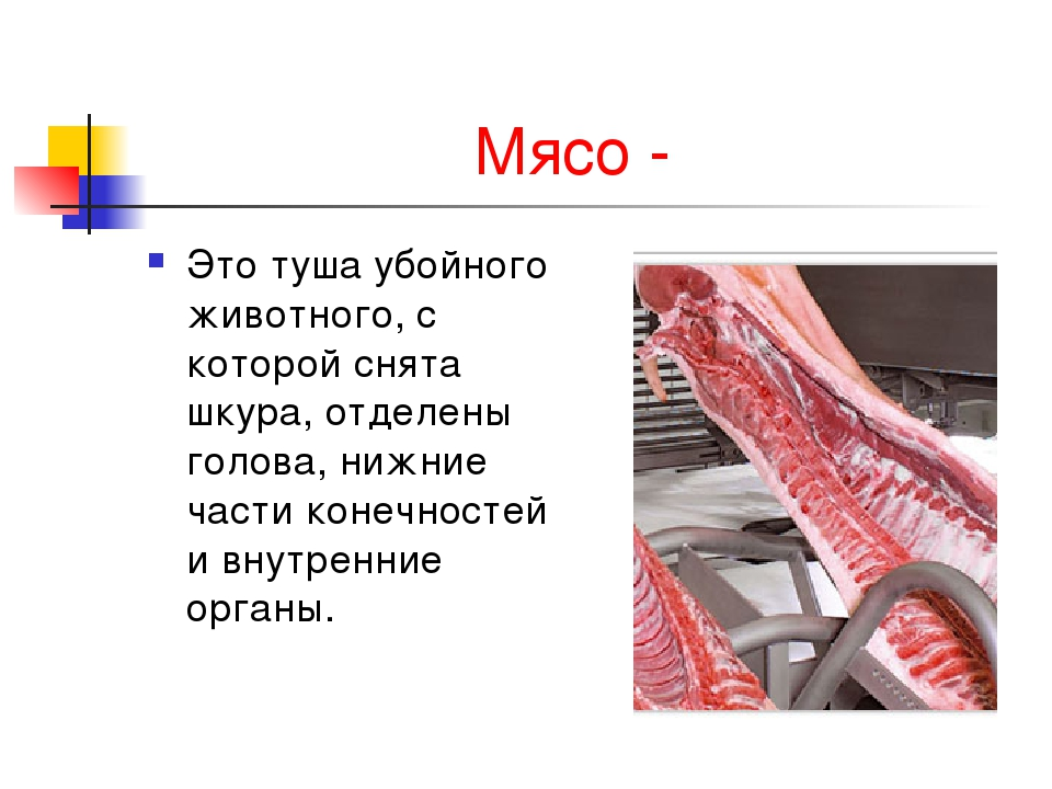 Мясо - Это туша убойного животного, с которой снята шкура, отделены голова, н...