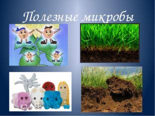 Полезные микробы