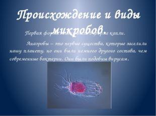 Происхождение и виды микробов. Первая форма жизни была в форме капли. Анаэроб