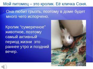 Мой питомец – это кролик. Её кличка Соня. Она любит грызть, поэтому в доме бу