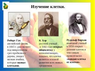 К. Бэр русский ученый в 1682 году открыл яйцеклетку у млекопитающих, показал,