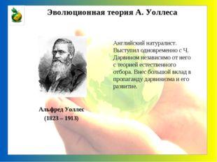 Альфред Уоллес (1823 – 1913) Английский натуралист. Выступил одновременно с