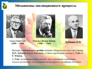 Явление генетического дрейфа впервые обнаружили советские ученые Н.П. Дубини