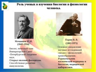 Мечников И. И. (1845-1916) Биолог, почетный член Императорской Санкт -Петерб