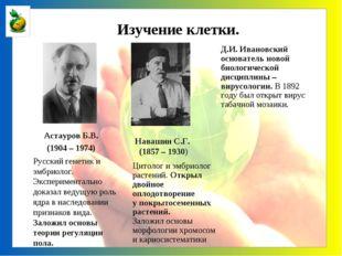 Астауров Б.В. (1904 – 1974) Русский генетик и эмбриолог. Экспериментально до