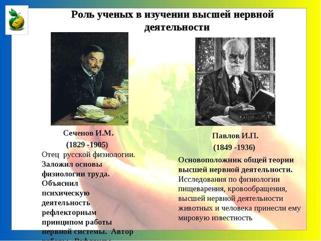 Сеченов И.М. (1829 -1905) Отец русской физиологии. Заложил основы физиологии...