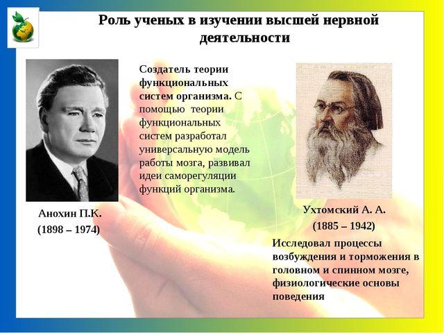 Анохин П.К. (1898 – 1974) Создатель теории функциональных систем организма....