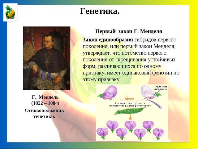 Генетика. Г. Мендель (1822 – 1884) Закон единообразия гибридов первого поколе...