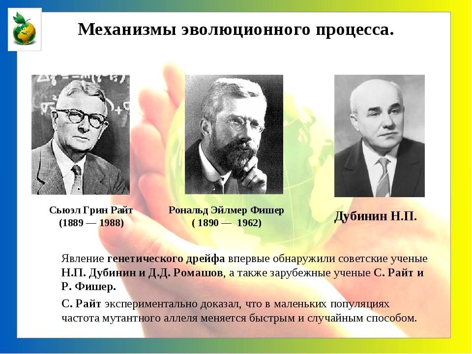 Явление генетического дрейфа впервые обнаружили советские ученые Н.П. Дубини...