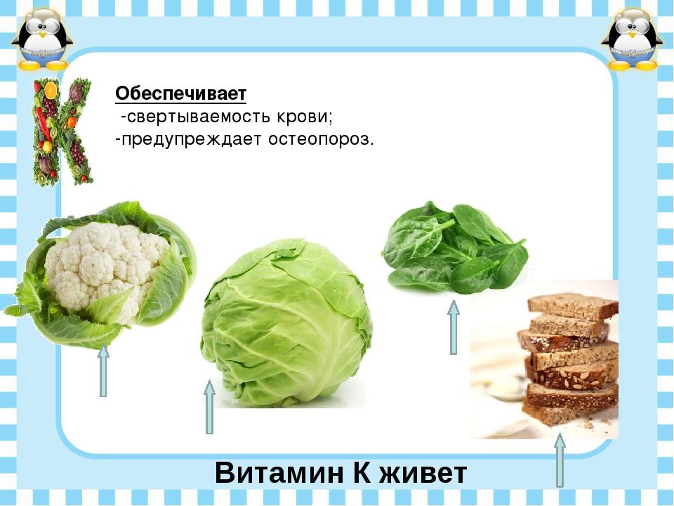 Витамин К живет Обеспечивает -свертываемость крови; -предупреждает остеопороз.