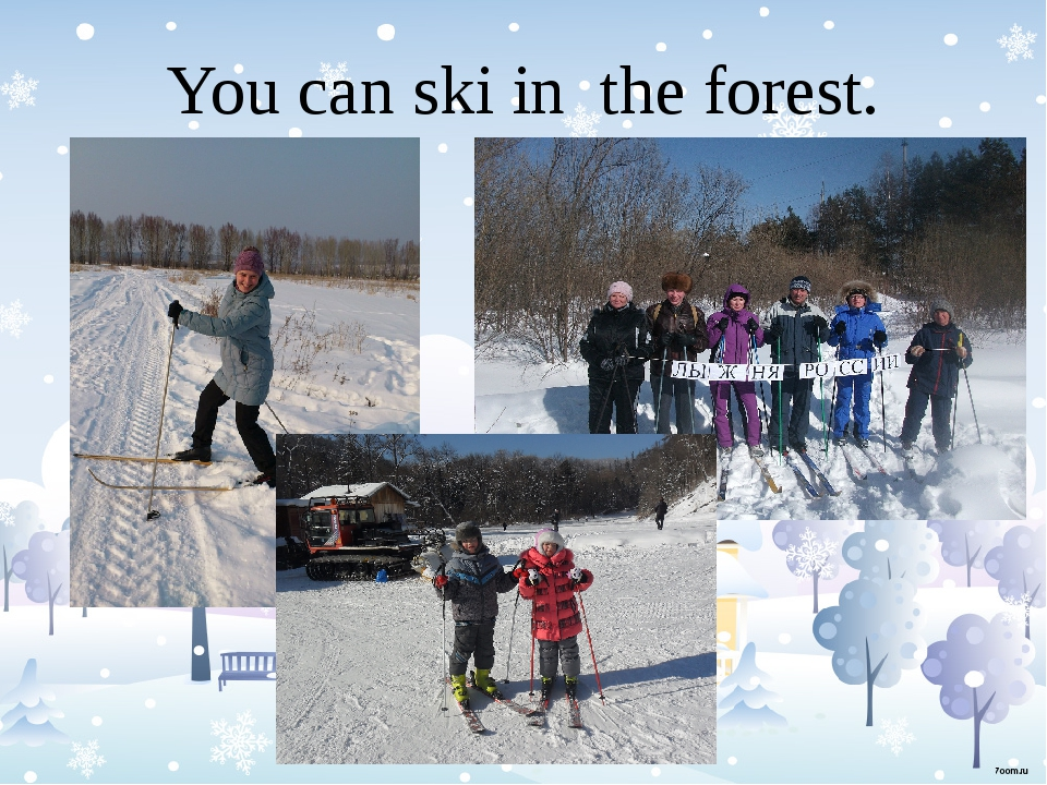 You can ski in the forest.