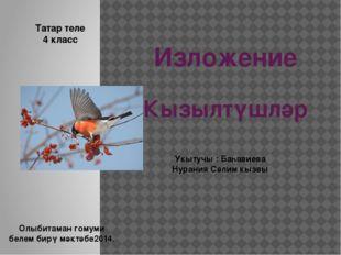 Изложение Кызылтүшләр Татар теле 4 класс Укытучы : Баһавиева Нурания Сәлим кы