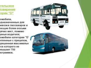 """Водительское удостоверение категории """"D"""" автомобили, предназначенные для пере"""