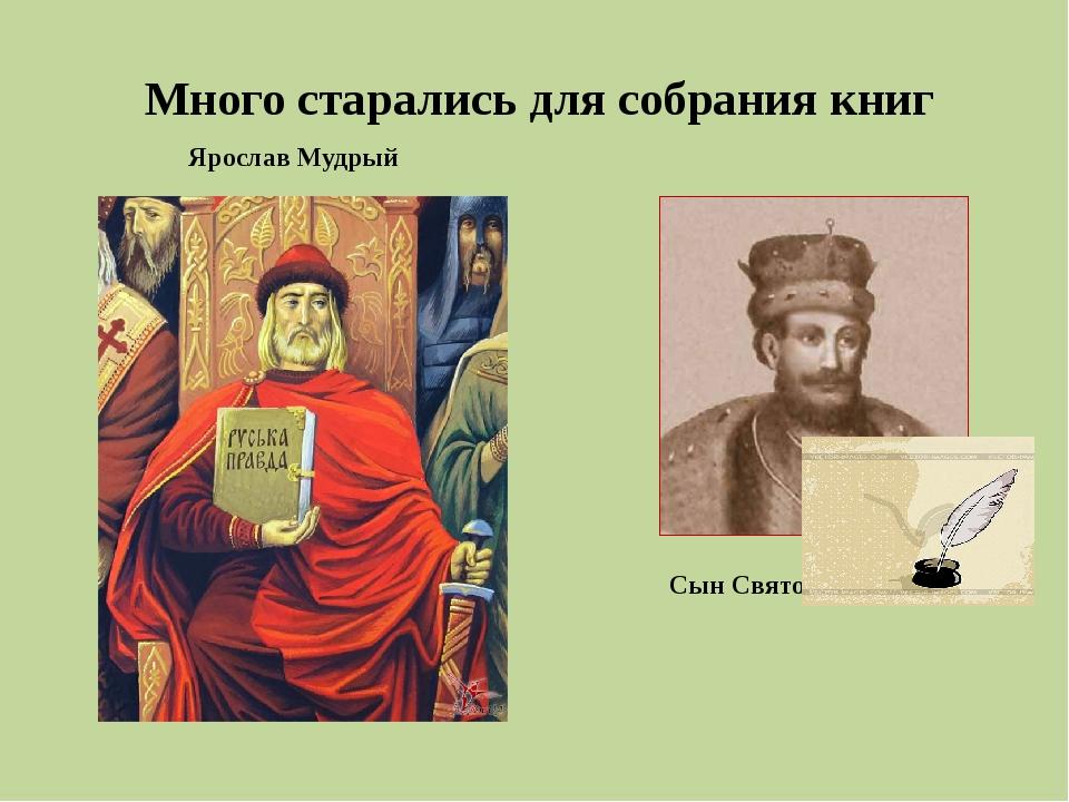 Много старались для собрания книг Ярослав Мудрый Сын Святослав