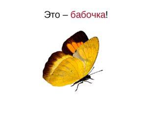 Это – бабочка!
