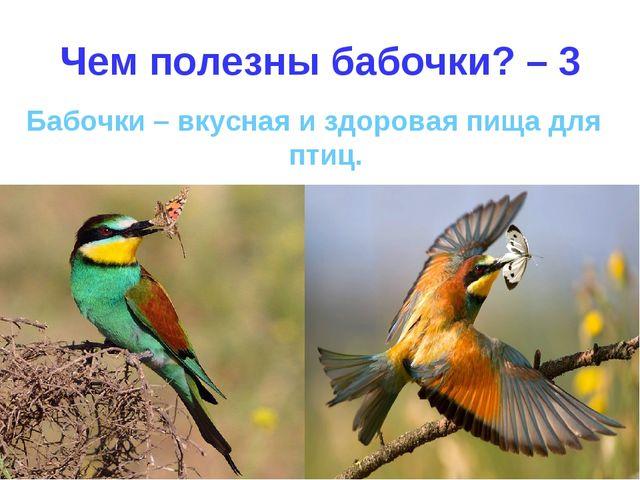Чем полезны бабочки? – 3 Бабочки – вкусная и здоровая пища для птиц.