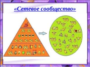 «Сетевое сообщество»