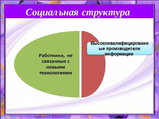 Социальная структура Высококвалифицированные производители информации