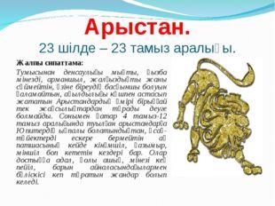 Арыстан. 23 шілде – 23 тамыз аралығы. Жалпы сипаттама: Тумысынан денсаулығы м