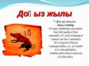 Доңыз жылы Доңыз жылы туылғандар Оңаша, табиғат аясында, бау-бақшада еңбек е