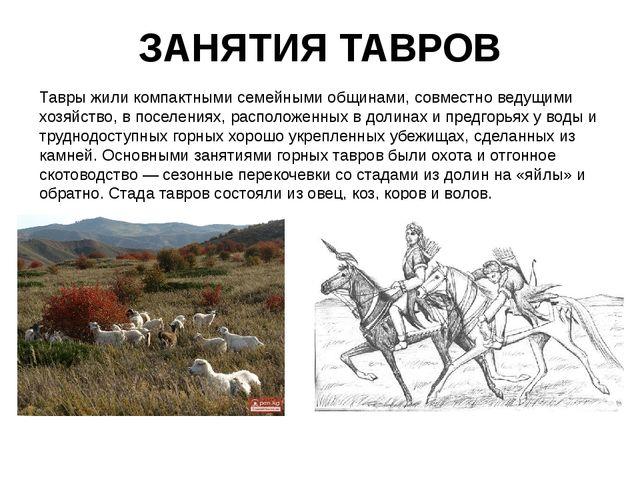 ЗАНЯТИЯ ТАВРОВ Тавры жили компактными семейными общинами, совместно ведущими...