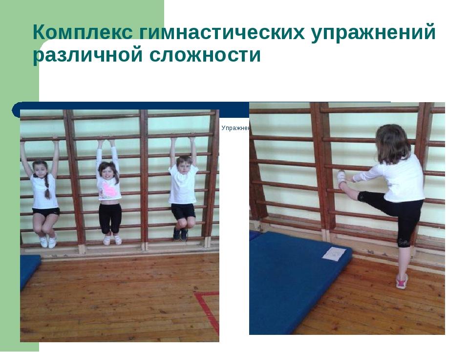 Комплекс гимнастических упражнений различной сложности 1.Весы. 2. Лазание по...