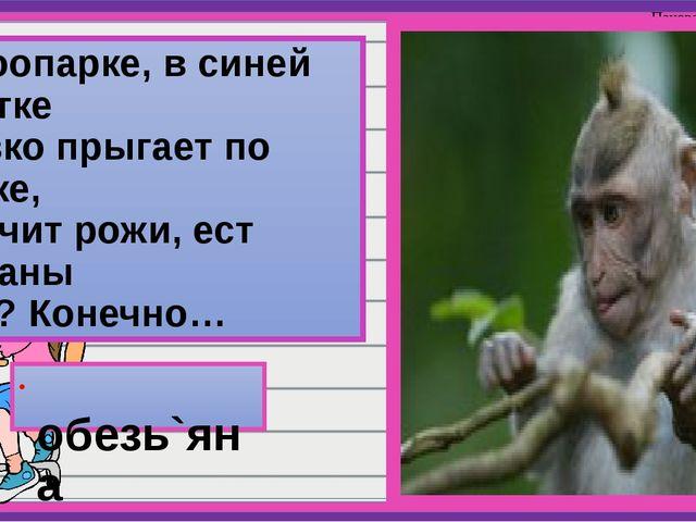 В зоопарке, в синей клетке Ловко прыгает по сетке, Корчит рожи, ест бананы Кт...