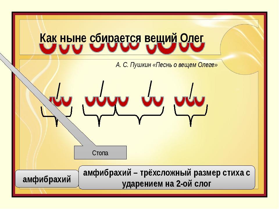Как ныне сбирается вещий Олег Стопа амфибрахий амфибрахий – трёхсложный разме...